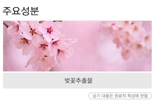 [Line Friends Edition] Missha Flower Bouquet