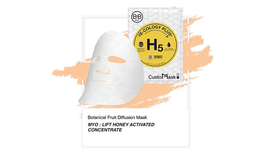 B&B Labs H5 Custo Mask