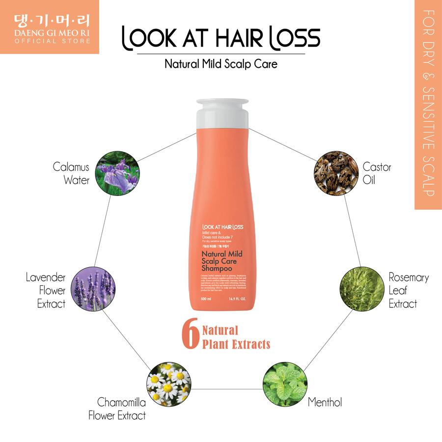 Daeng Gi Meo Ri Look At Hair Loss Natural Mild Scalp Care Shampoo 500ml